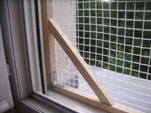 Protection Des Fenêtres Pour Chat Sans Percer Forum Le Reboot